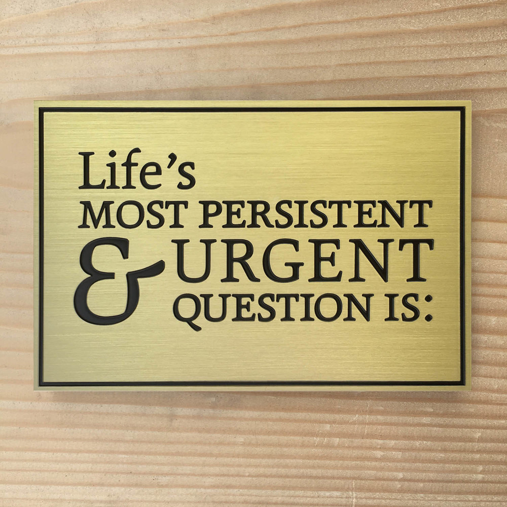 mlk quote-lifes important questions-mwp-brass-etched plaque-satin.jpg