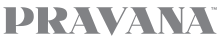 pravanaconnect_logo.png