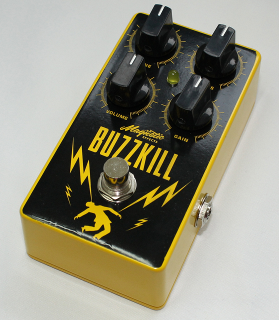 Buzzkill Press Picture.jpg