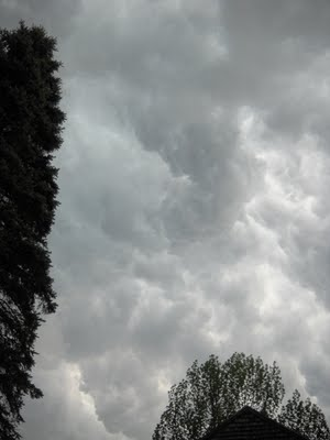 patricia_shea_storm_maine_7.jpg
