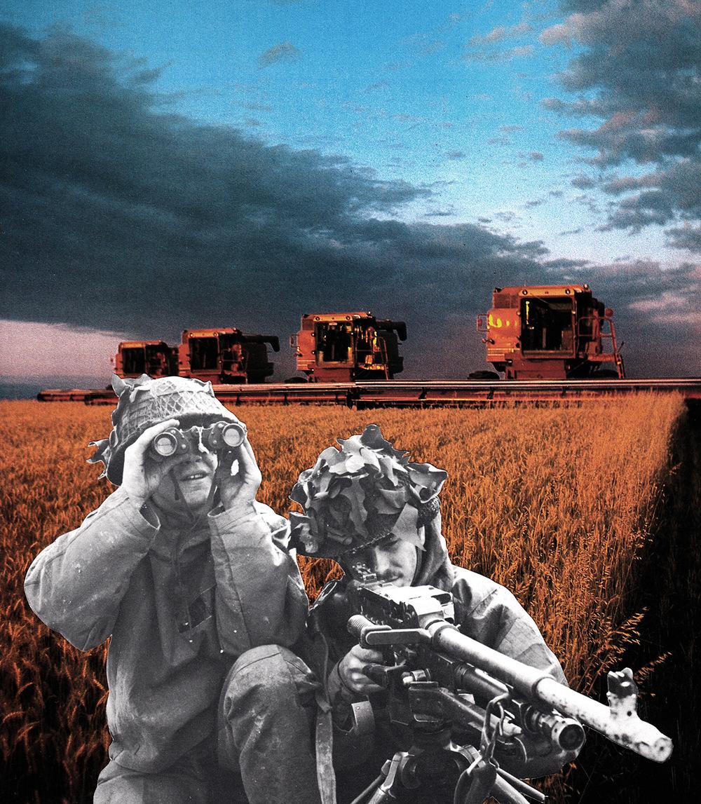Harvest-II-web.jpg