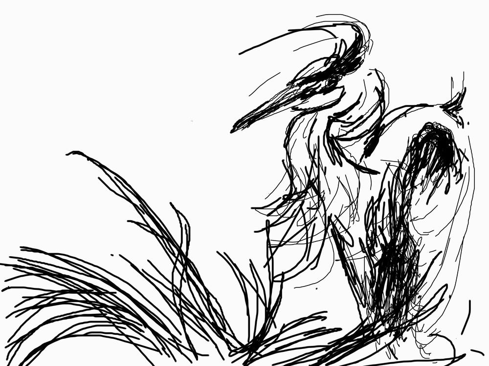 Tree Top Heron Too