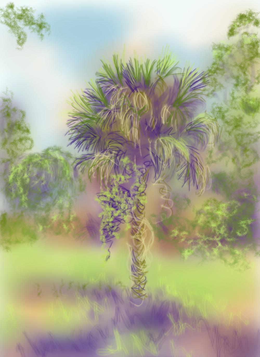 Shaggy Palm , digital