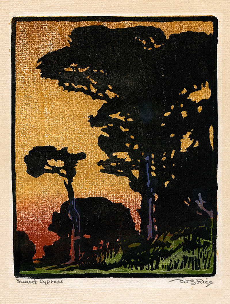 William S. Rice Sunset Cypress-small.jpg