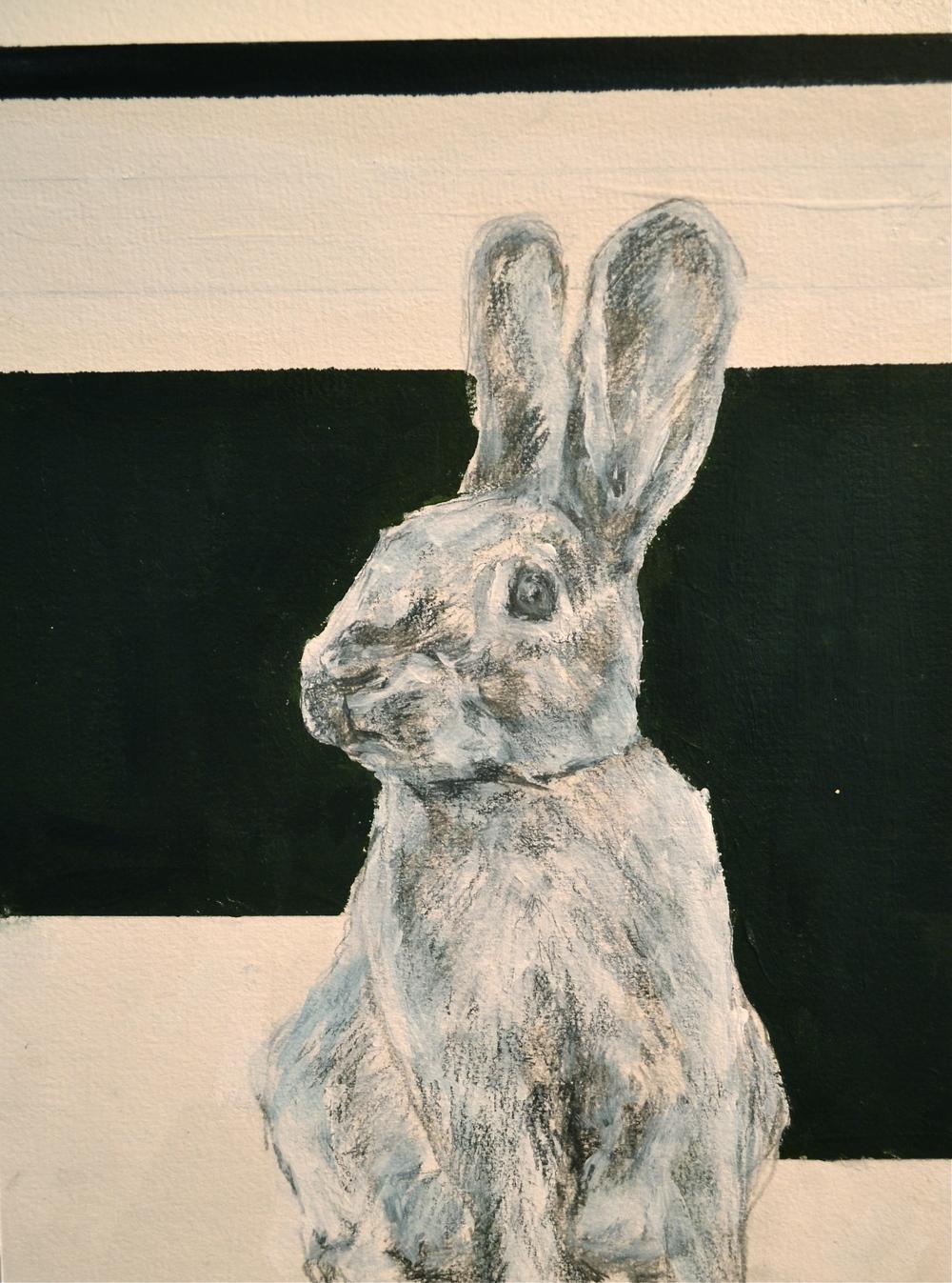 """Rabbit Series #3"""