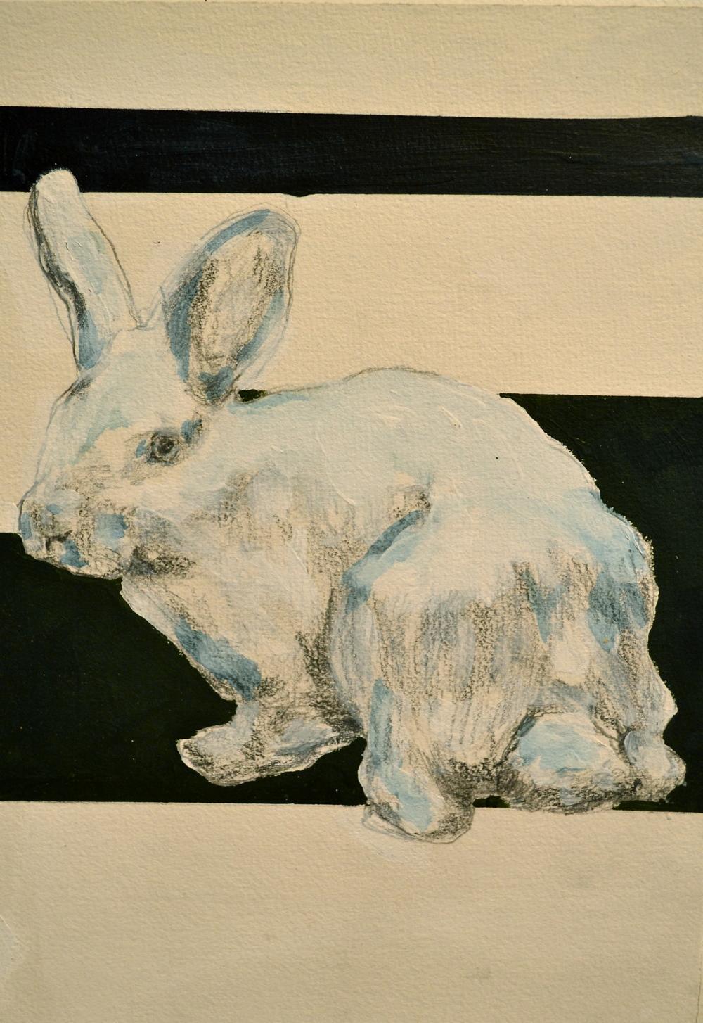 """Rabbit Series #4"""