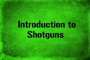 introduction-to-shotguns.jpg