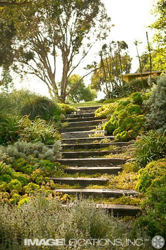 Garden-06f_104_2.jpg