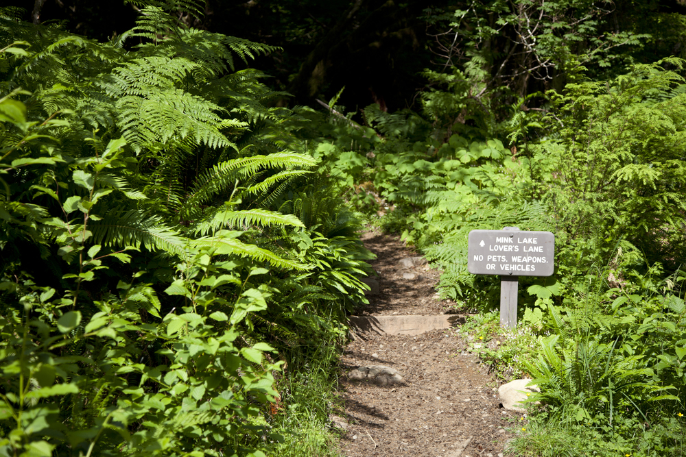 Sol Duc - Hiking (1).jpg