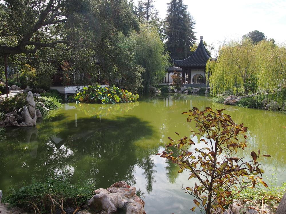 Chinese Garden22.JPG