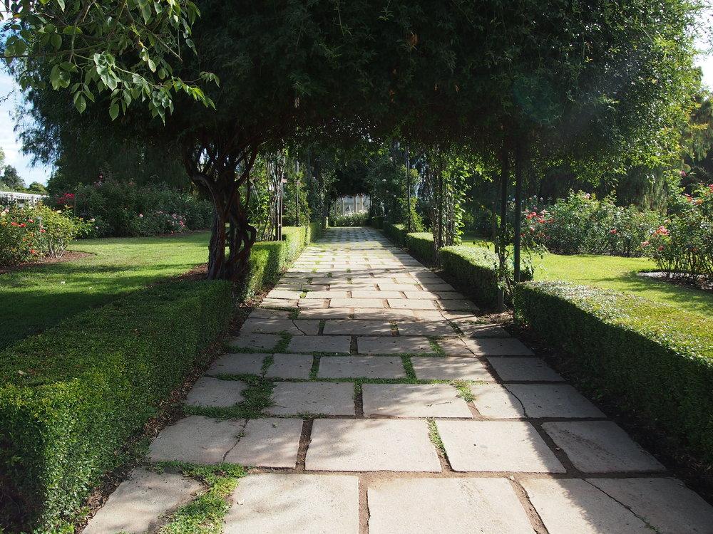 Rose Garden07.JPG