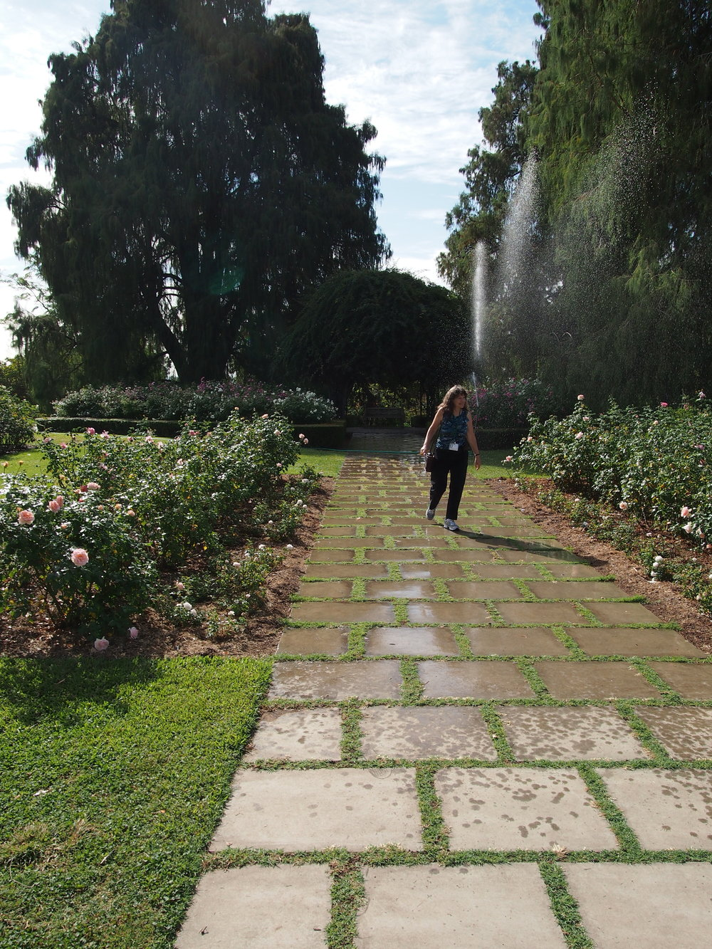 Rose Garden13.JPG