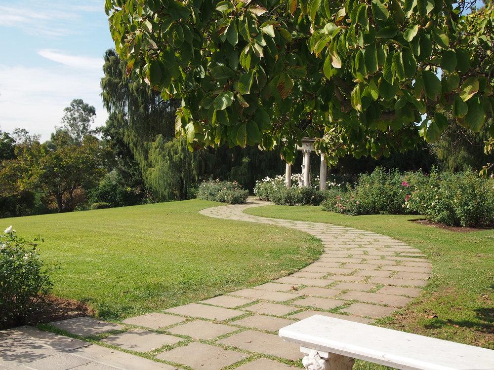 Rose Garden112.JPG