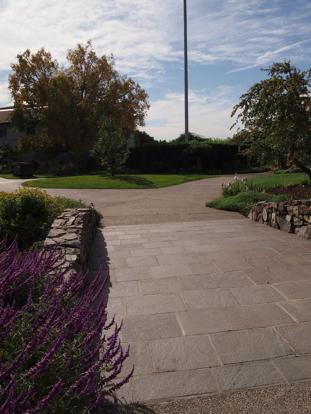 Shakespeare Garden08.JPG