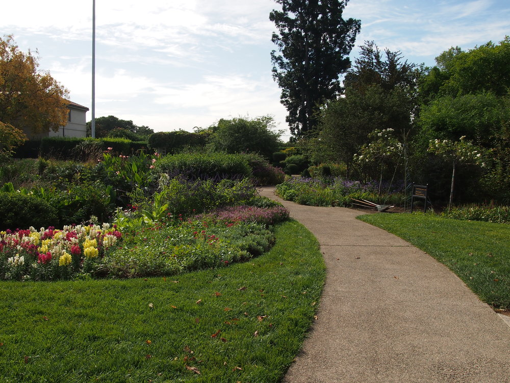 Shakespeare Garden15.JPG