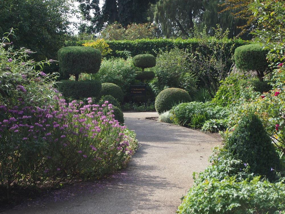 Shakespeare Garden18.JPG
