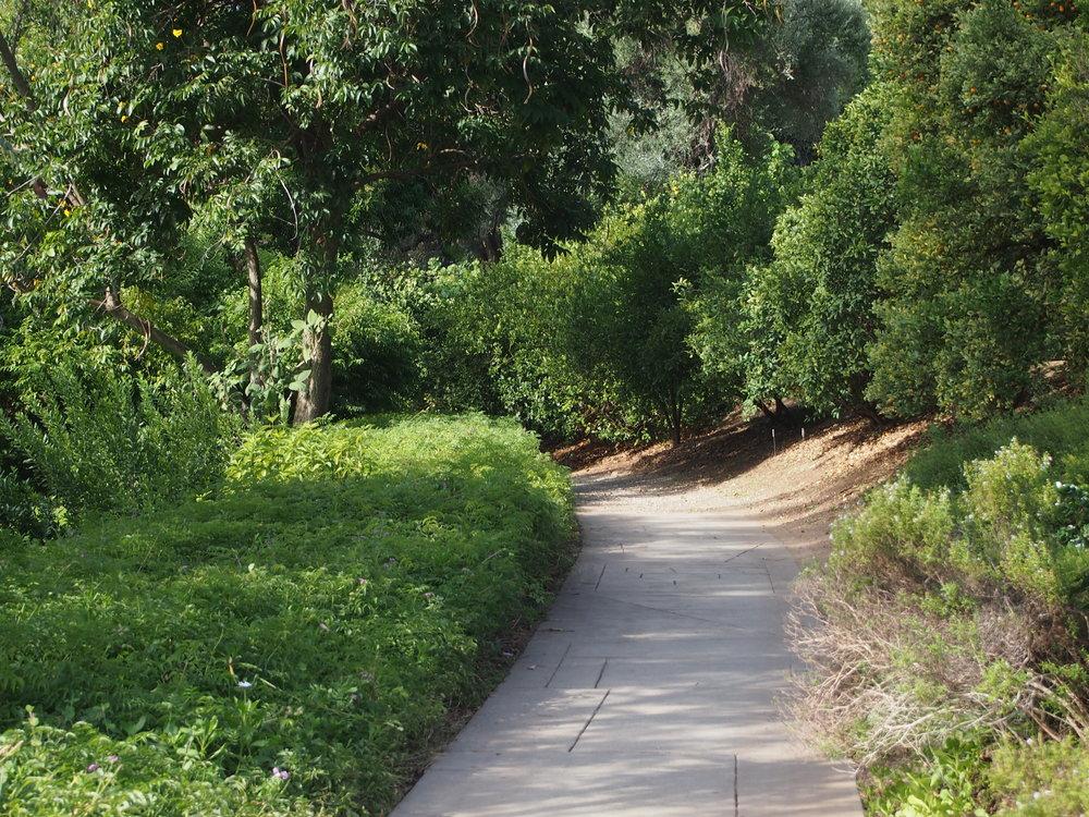 Subtropical Garden Path06.JPG