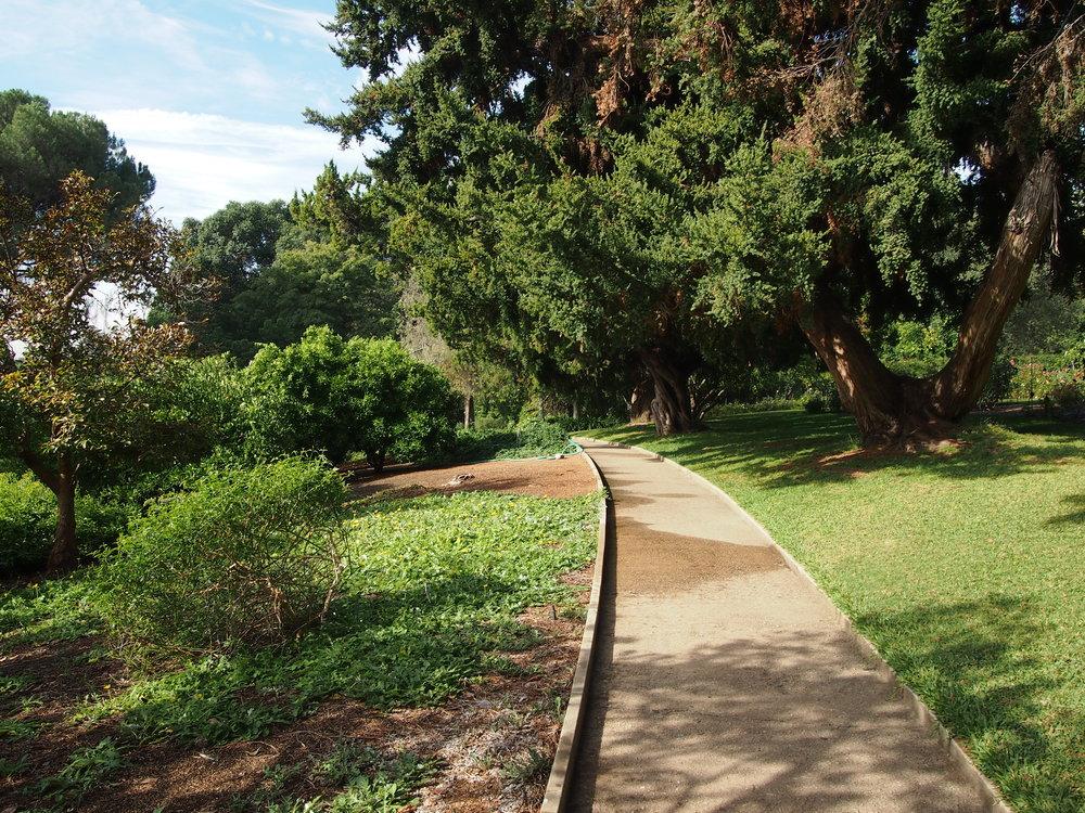 Subtropical Garden Path09.JPG
