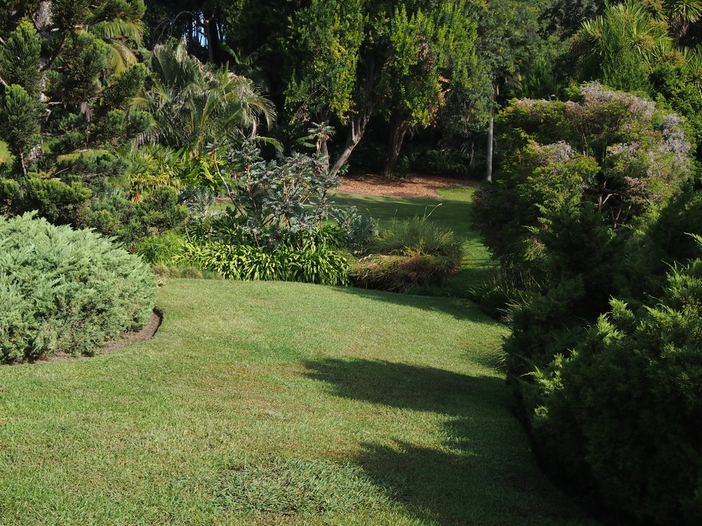 Aussi Garden01.JPG