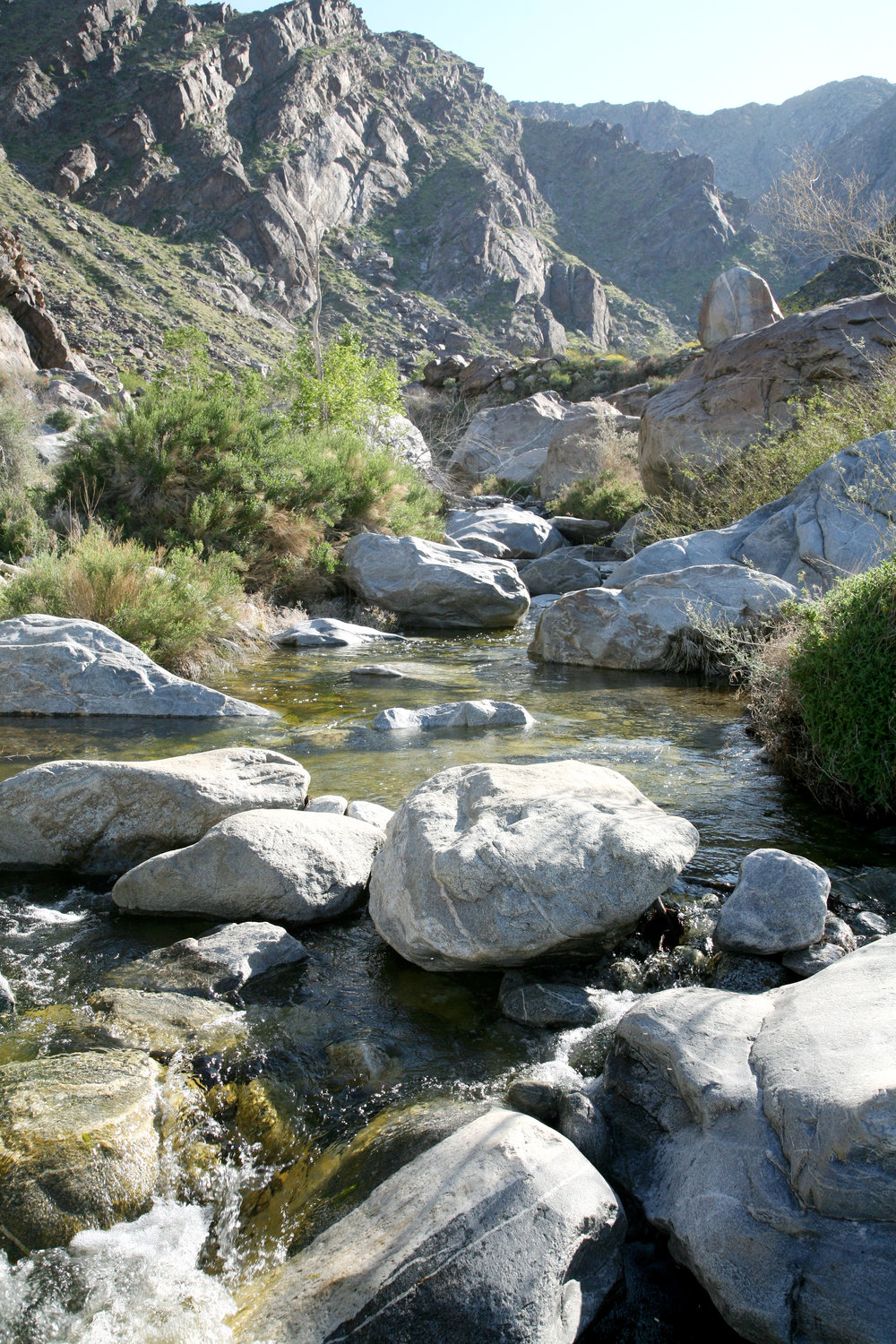 Tahquitz Canyon stream.jpg