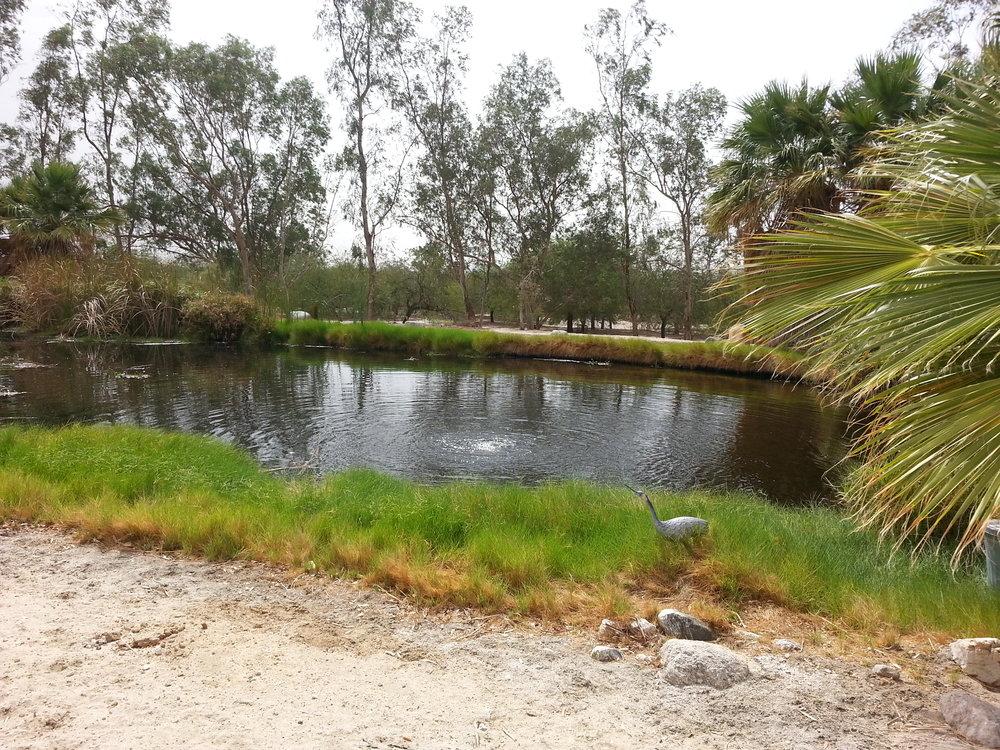loc760 DHSbwr lake.jpg