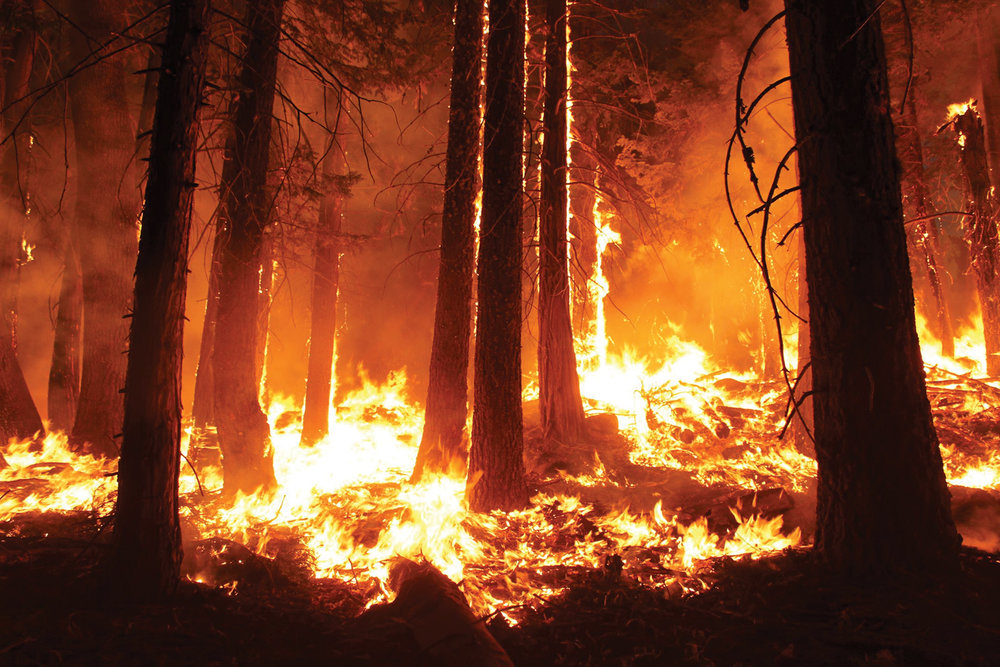 Rim Fire (Photo by Mike McMillan, U.S. Forest Service)
