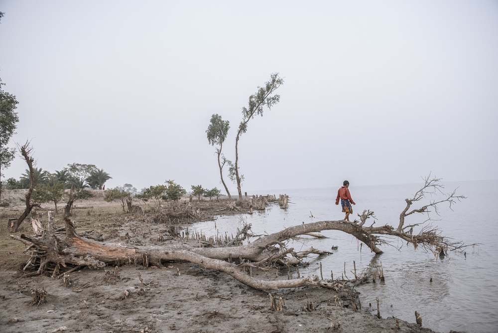 Monpura Island