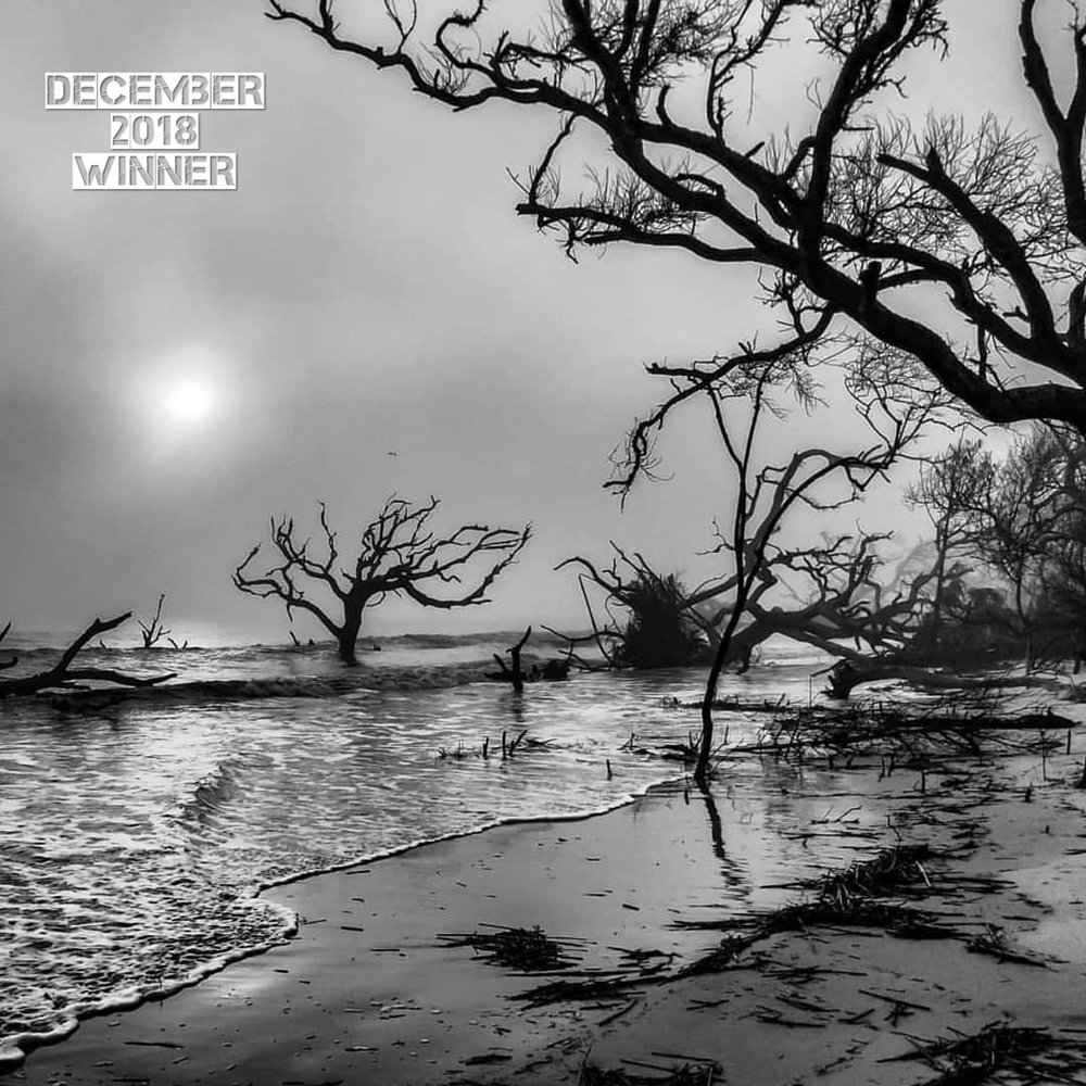 """December 2018s theme was """"Black & White""""! I always love the contrastie world of B&W. Congrats to  Retta Stephens , you are the winner of the G.O. Newsletter Monthly Photo Contest! This image is very powerful. The judges all brought up different reasons why they picked this image. The composition and the balance created by the trees and the way Retta chose to frame them. The 3 distinct tonal range, the bright sky, the black trees, and the gray sand. This really does give the image a simple sophistication that makes it pleasing to the eye. One of the judges totally liked it for what I love this image for, the intense emotion and story that I feel as soon as I look at it. When I look at this image I actually feel the unsettling chaos that the image portrays. The fog creates an endlessness because there is no horizon line. The twisted broken trees almost look like they are trying to pull themselves to shore to escape the pounding surf. The rough water and crashing waves makes me feel as if a terrible storm has battered this coastline. I have been to this beech before, with bright blue sky's and sun this is a beautiful and almost magical place. This B&W image feels so different and I get the feeling this feels closer to the truth of what really happened here. Beautiful shot Retta and Congratulations!"""