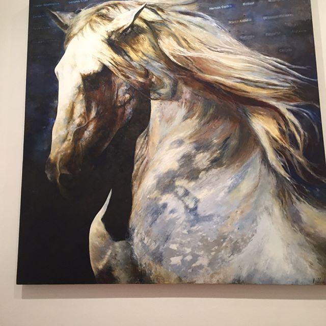 El caballo es poderoso y humoroso #horses #equinos #caballos #guadalajara #mexico