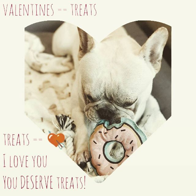 You deserve love and by the transitive property you also deserve chocolate. (Side note: don't give your dog chocolate) // photo credit to @ishanliou and her dog cooper  #bodypositive #valentines #selflove #donuts  #frenchbulldog #dogs #dogstagram