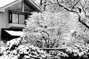 溫哥華的風花雪夜 2013/04/25-2013/05/23
