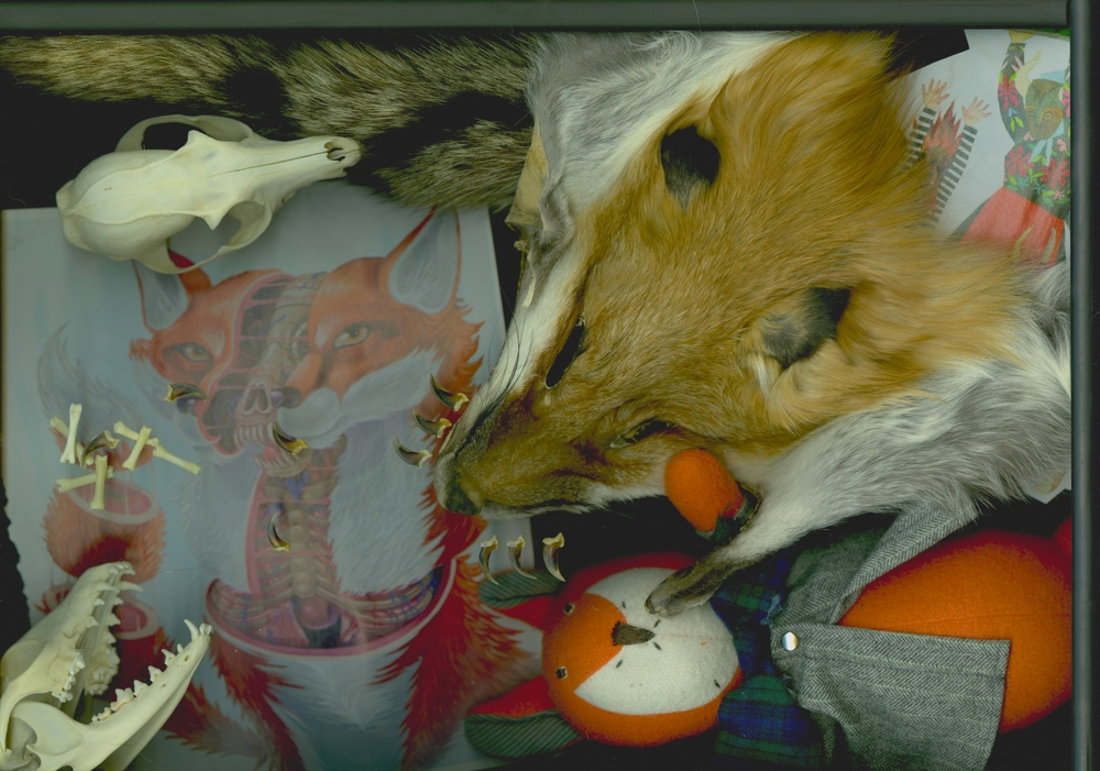 Accoutrements of a Fox Lover 1
