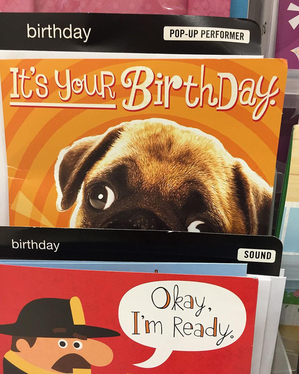 pug birthday.jpg