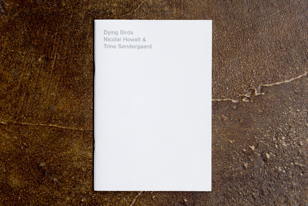 Dying Birds  Trine Søndergaard and Nicolai  Howalt  $75.00
