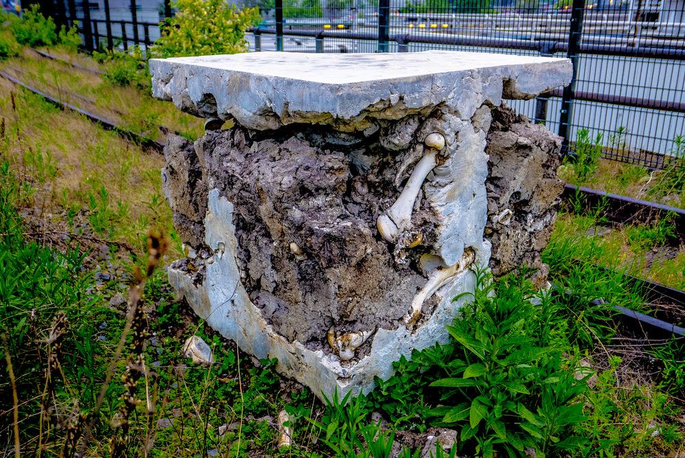 Bone Box.JPG