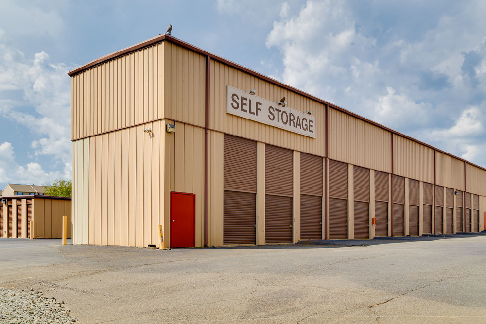 Self Storage Services, Inc.