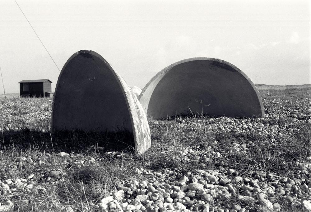 2-shells.jpg