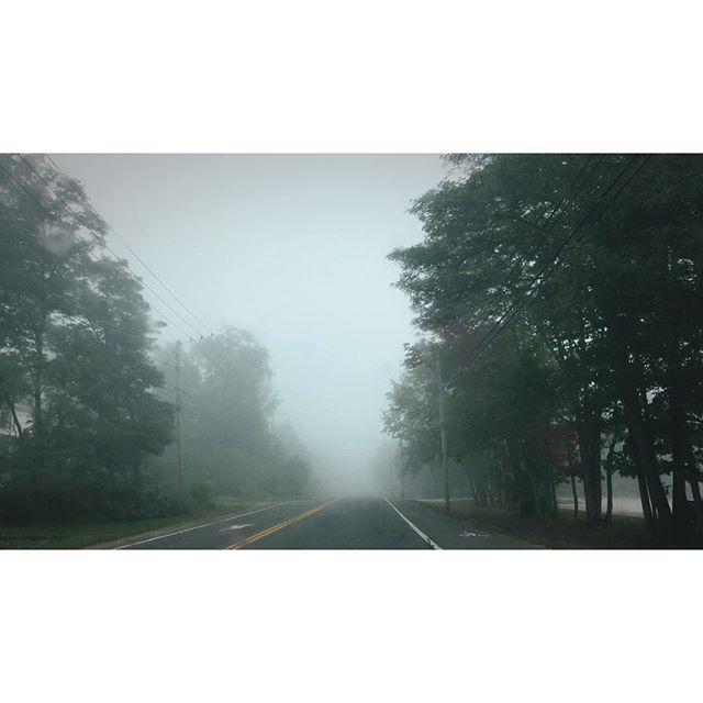Foggy morning drives