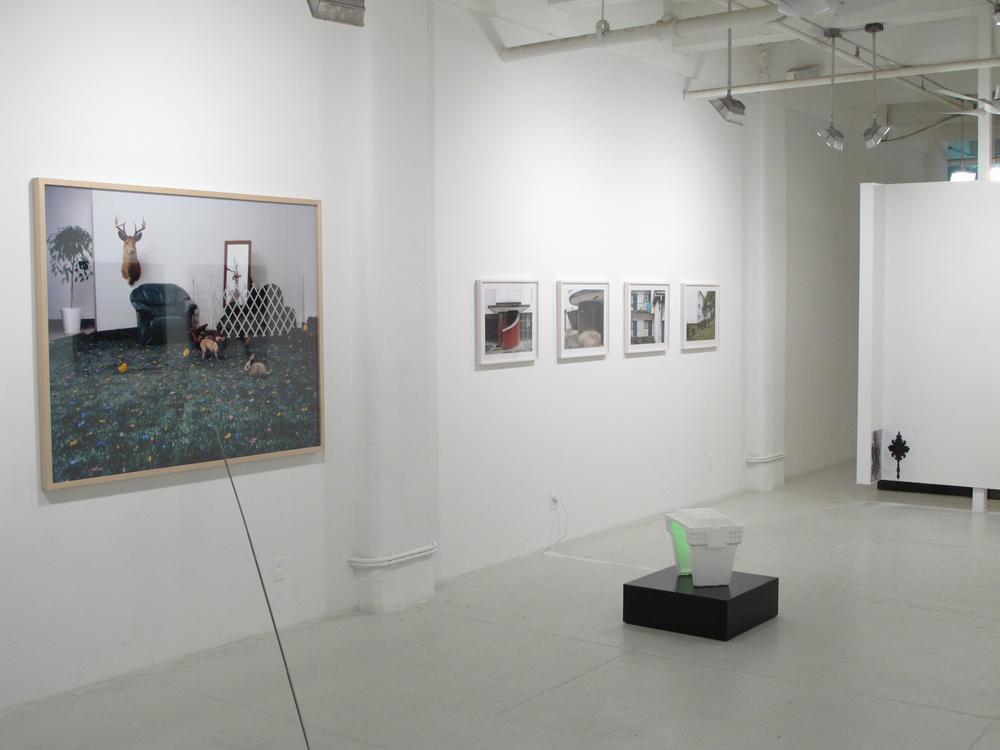 Curatorial 9.jpg