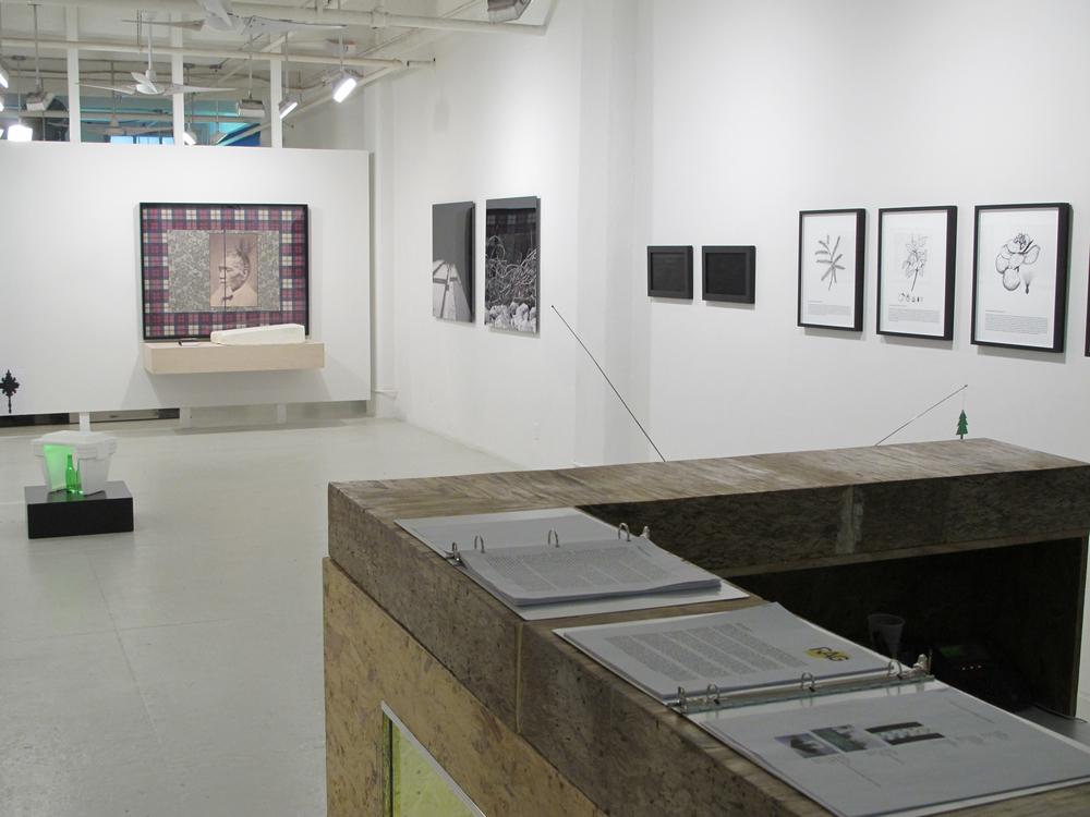 Curatorial 11.jpg