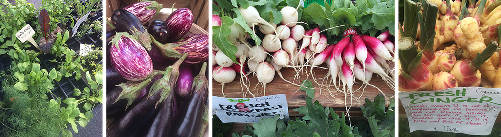 Our sunday trips to the farmers' market at Dupont Circle are always a visual delight.