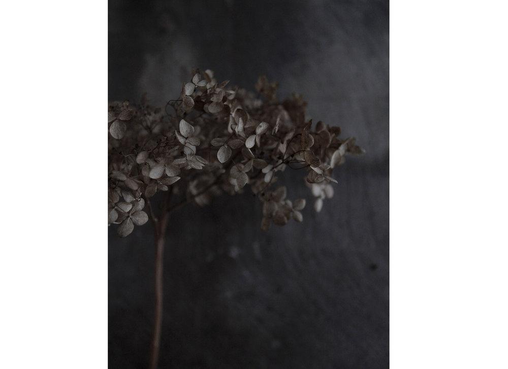 slate flower .jpg