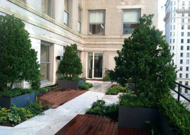 Irving Place Capital Office Terrace Pfinyc