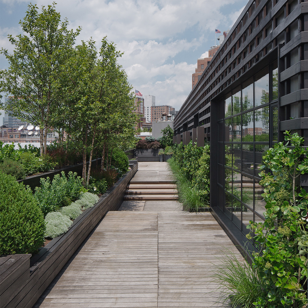 30th Street Residence: Landscape Contracting