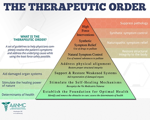 The-Therapeutic-Order