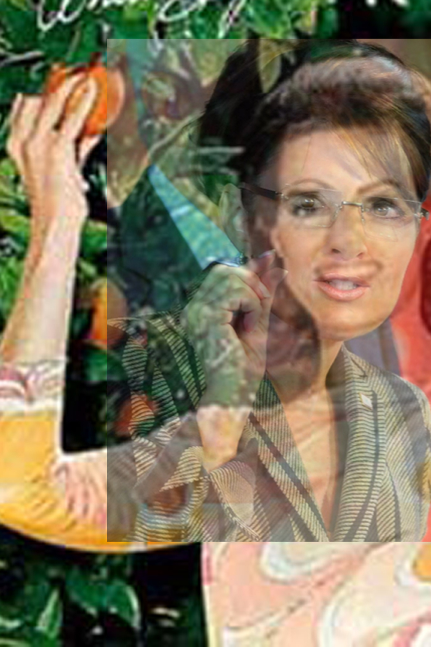 Mergers and Acquisitions #28 SARAHPALIN&ANITABRYANT_12x18.jpg