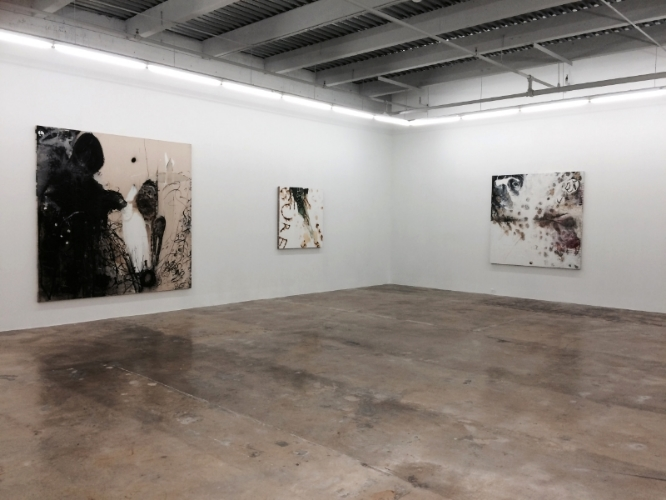 "installation view of ""no man's land"" exhibition, rubell family collection, 2015-16"
