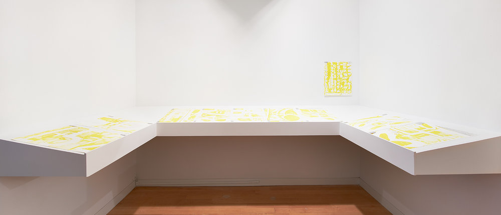 Installation View, Solutions V for Sigmar Polke, 2012