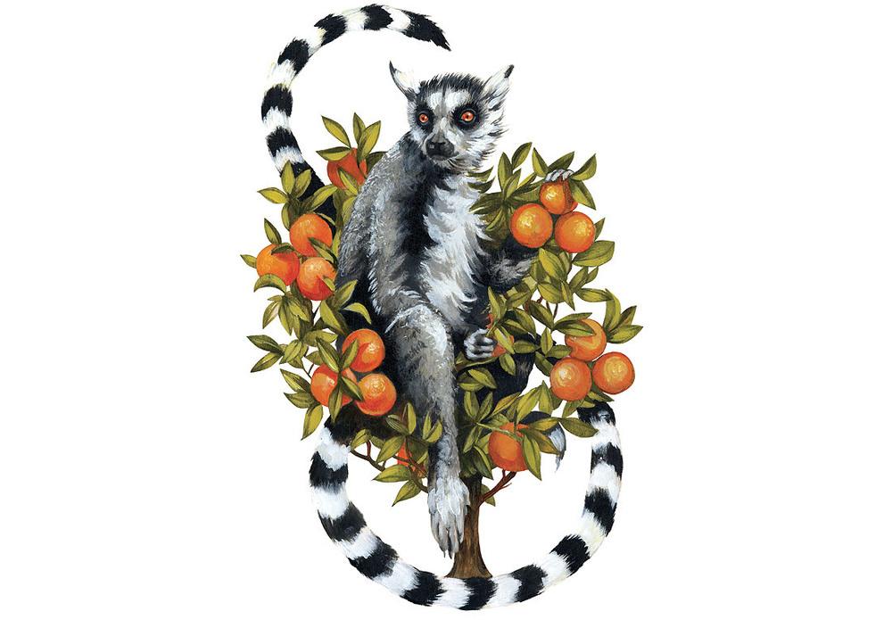 CARDS_lemur1.jpg