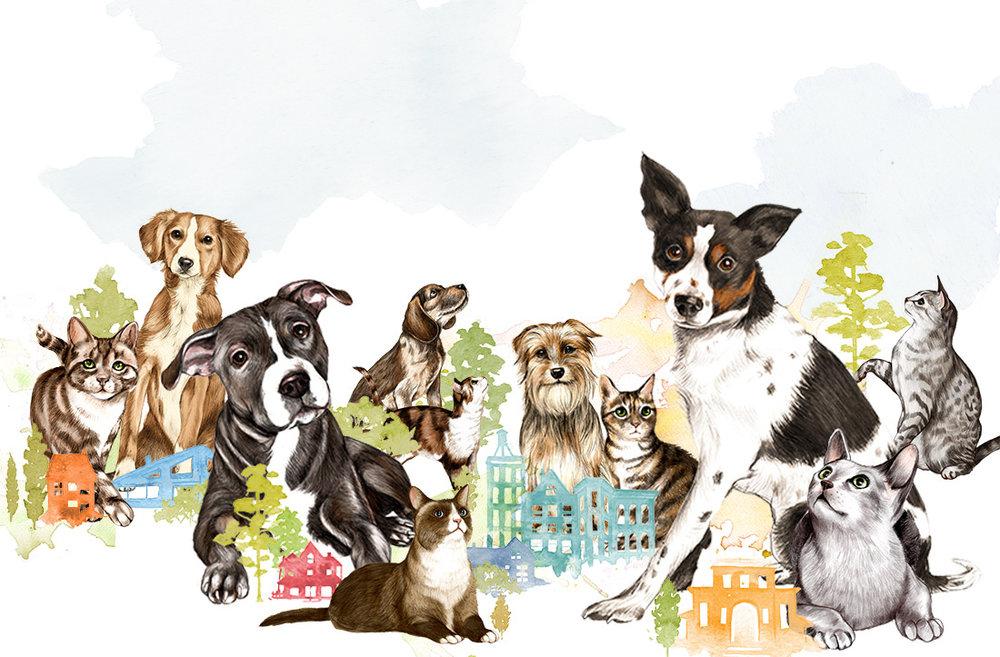 Do Unto Animals, 2015 : Tracey Stewart, Artisan Books